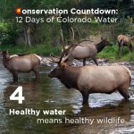 Conservation Countdown: 4 Days Left to Comment on Colorado Water Plan