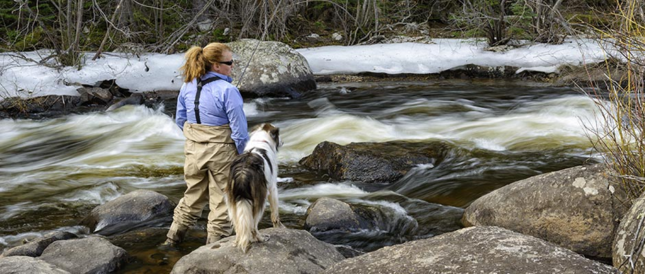 Water for colorado water conservation and use strategies for Water dogs fish